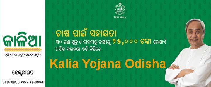 Kalia Yojana Odisha