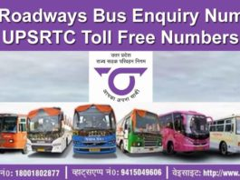 UP Roadways Bus Enquiry Number