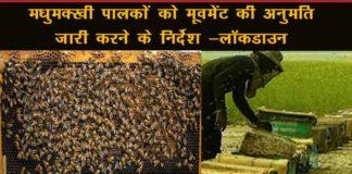 लॉकडाउन में मधुमक्खी पालकों के लिए निर्देश जारी