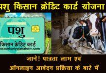 पशु किसान क्रेडिट कार्ड योजना हरियाणा