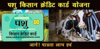 Pashu Credit Card Yojana