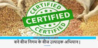 किसान बीज उत्पादक बनने के लिए 20 अगस्त से पहले करें ऑनलाइन आवेदन