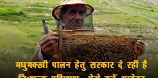 मधुमक्खी पालन हेतु प्रशिक्षण