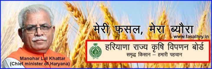 Meri Fasal Mera Byora fasal.haryana.gov.in