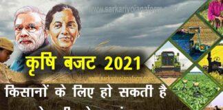 Agriculture Budget 2021 expectations : बजट 2021 में किसानों को क्या मिला