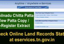TN Patta Chitta | Patta Chitta Online Land Record Status Tamilnadu {View} தமிழ்நாடு நில தகவல்