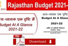 राजस्थान बजट 2021 पीडीएफ